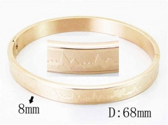 HY Wholesale Stainless Steel 316L Bangle-HY42B0152HWW