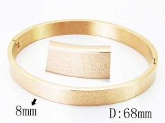HY Wholesale Stainless Steel 316L Bangle-HY42B0149HSS