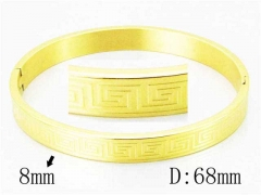 HY Wholesale Stainless Steel 316L Bangle-HY42B0139OL